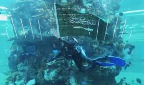 بالفيديو.. علم المملكة يرفرف داخل أكبر حوض أسماك في مطارات العالم