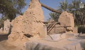 """قصة مقولة الملك عبدالعزيز """" تلقوني عند شجرة آل صفيان """""""