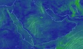 «المسند»: استمرار الرياح المثيرة للغبار على الشمال الشرقي بالمملكة