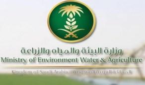 «البيئة» تعلن إيقاف جميع التعاملات الورقية لـ 9 خدمات