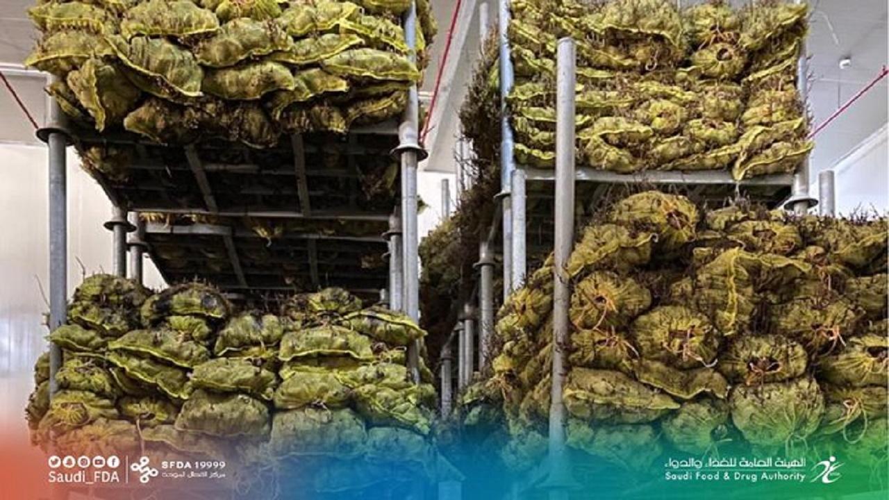 ضبط مصنع يخزن المواد الغذائية الأولية في ظروف غير مناسبة بالرياض