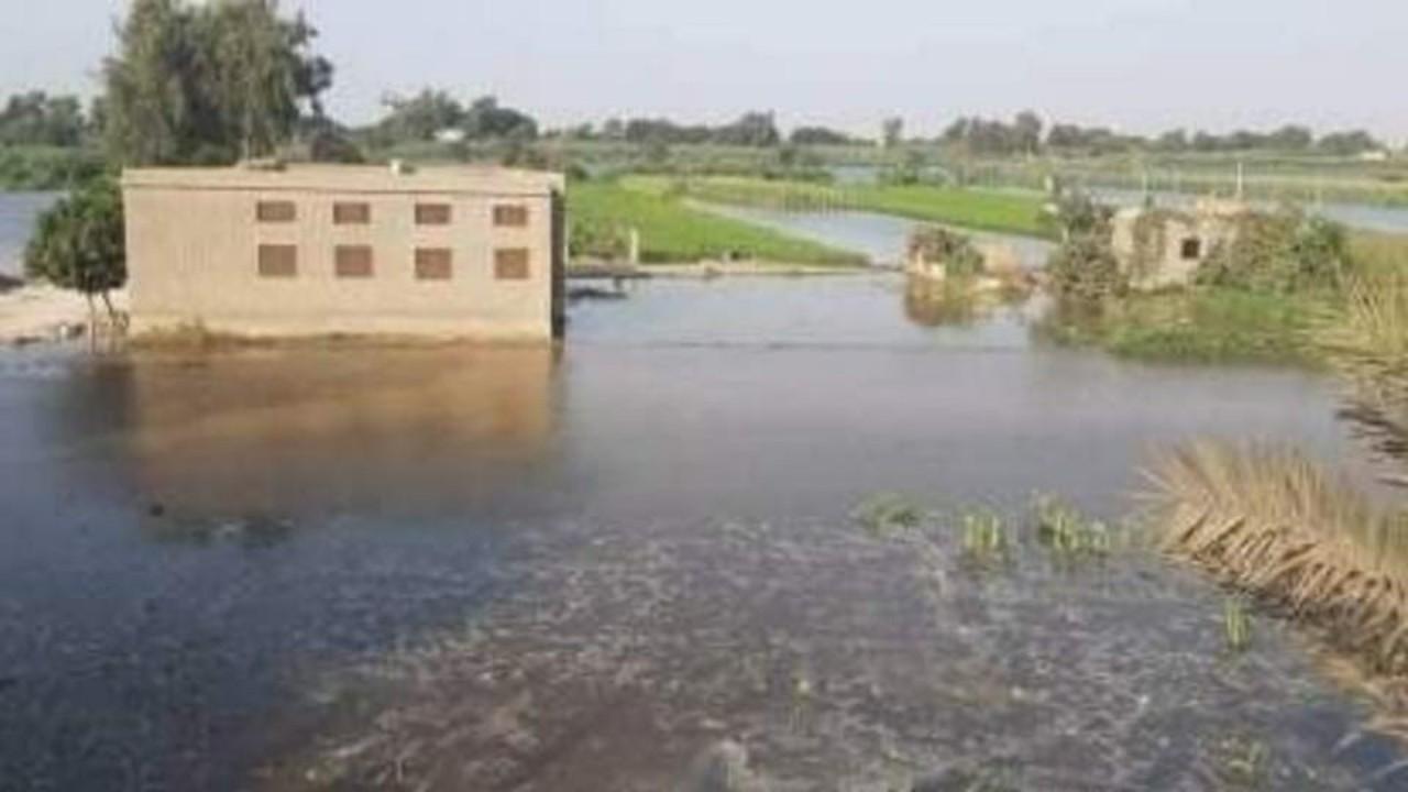 غرق عشرات الأفدنة في مصر بسبب الفيضان