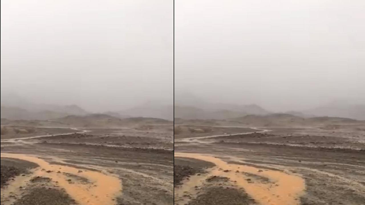 شاهد.. هطول أمطار غزيرة وصواعق قوية في المدينة المنورة