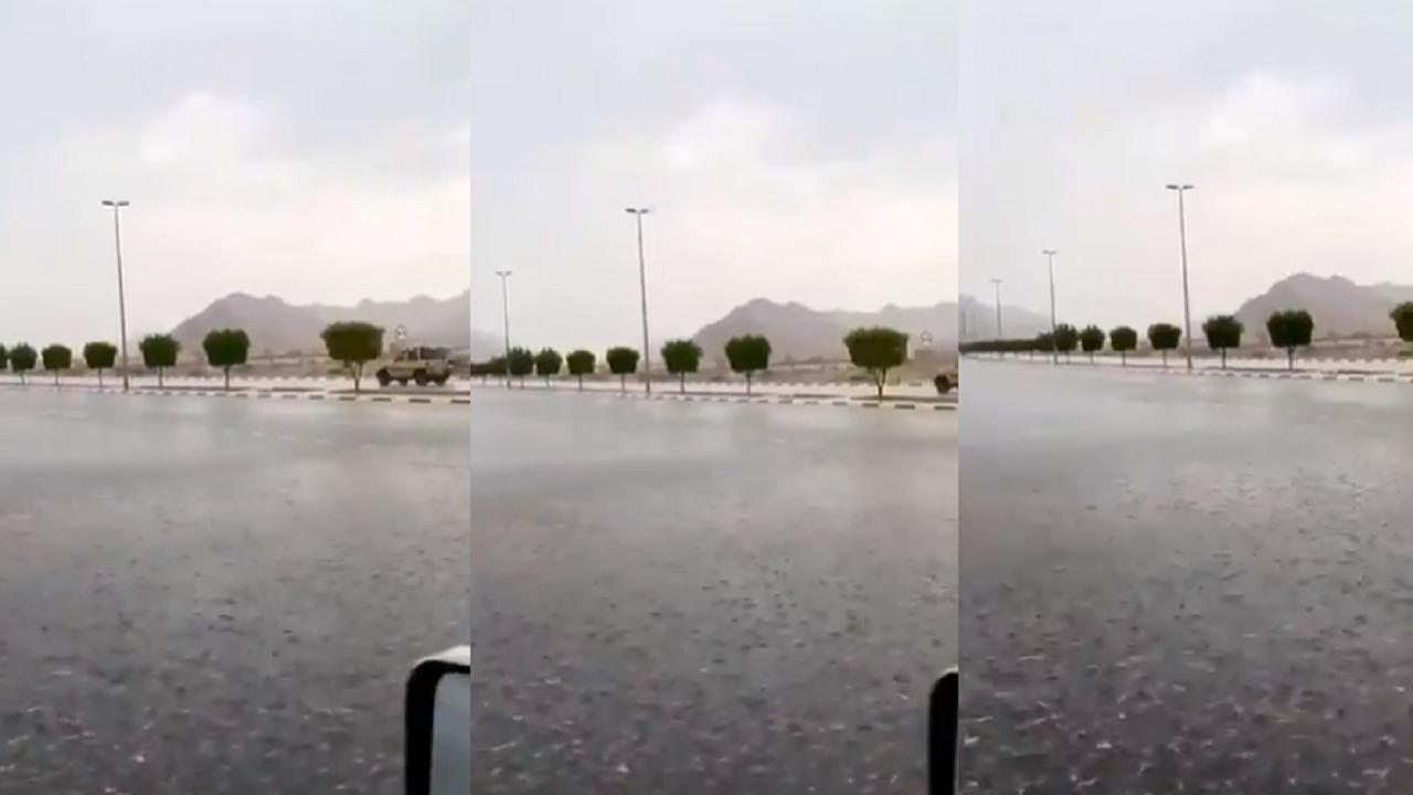 بالفيديو.. هطول الأمطار على العيص بالمدينة المنورة