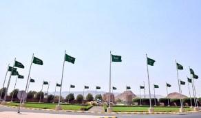 العلم يعلو 1200 سارية في المدينة المنورة ابتهاجاً بيوم الوطن