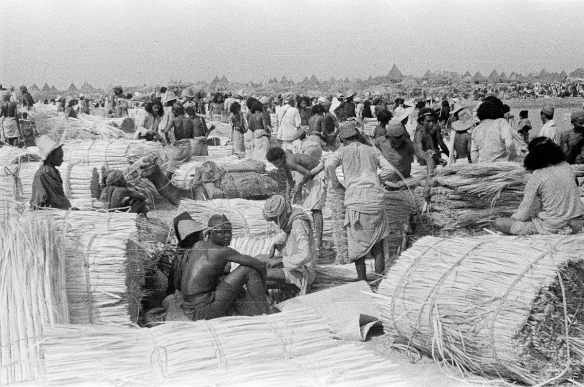 صورة لمجموعة تجار ومشترين في سوق مفتوح بجازان منذ 75 عام