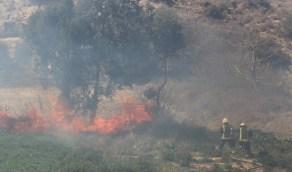 """اندلاع حريق في منطقة مكسوة بالأشجار في جبل """" فران """""""