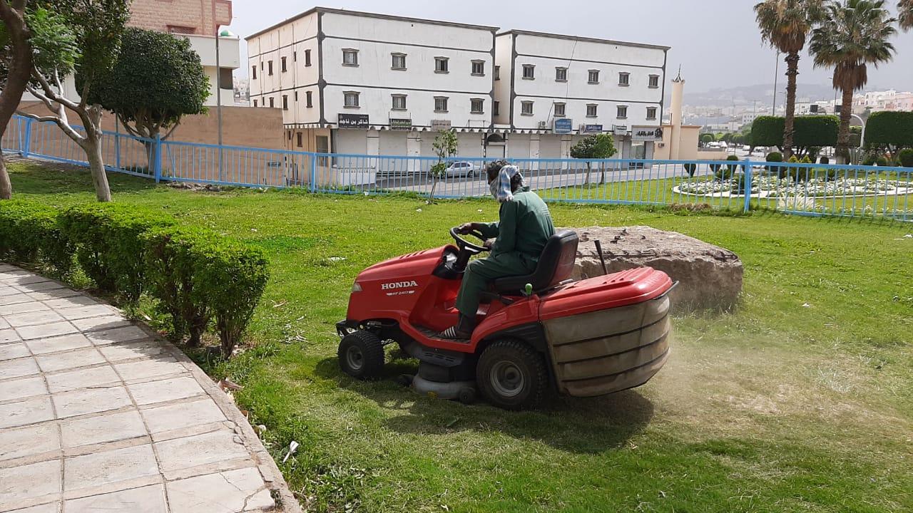 أمانة عسير تُزيّن حدائق وميادين أبها بأكثر من 60 ألف زهرة موسمية خلال أسبوع