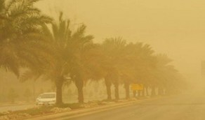 «الأرصاد» تنبه برياح نشطة وأتربة مثارة على الرياض