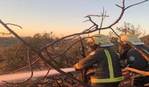 بالصور..استمرار أعمال التبريد ومكافحة بعض البؤر في حريق السودة