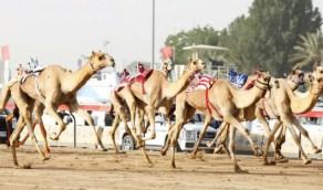 رئيس نادي الإبل يُعلن إقامة مهرجان الملك عبدالعزيز لسباقات الهجن