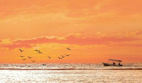 شواطئ البرك المخملية وقت غروب الشمس