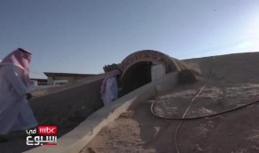 بالفيديو.. مسجد بالرس تحفة معمارية في الجمال والتصميم عمره 12عاما
