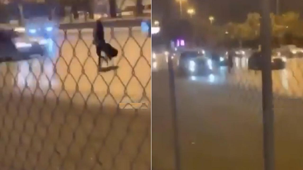 بالفيديو.. فتاة تعرض نفسها للخطر على أحد الطرق السريعة في المملكة
