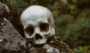 العثور على جمجمة رجل مفقود منذ ثماني سنوات