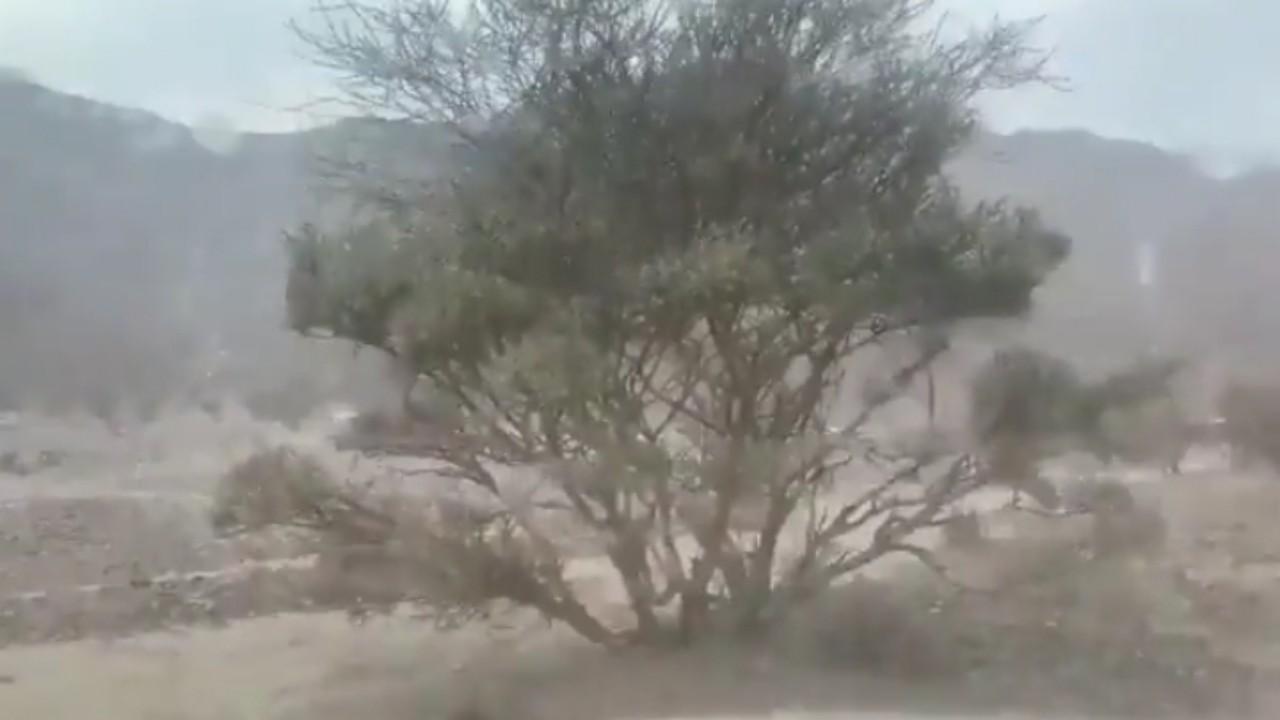 بالفيديو.. هطول أمطار على عدة طرق بالمدينة المنورة