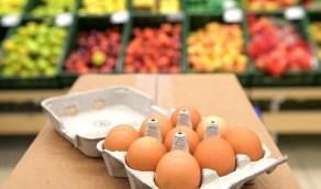خبراء يحسمون الجدل بشأن الفرق بين البيض ذي القشرة البنية والبيضاء
