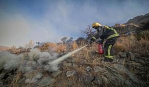 بالصور.. الدفاع المدني يواصل جهوده لإخماد حريق تنومة