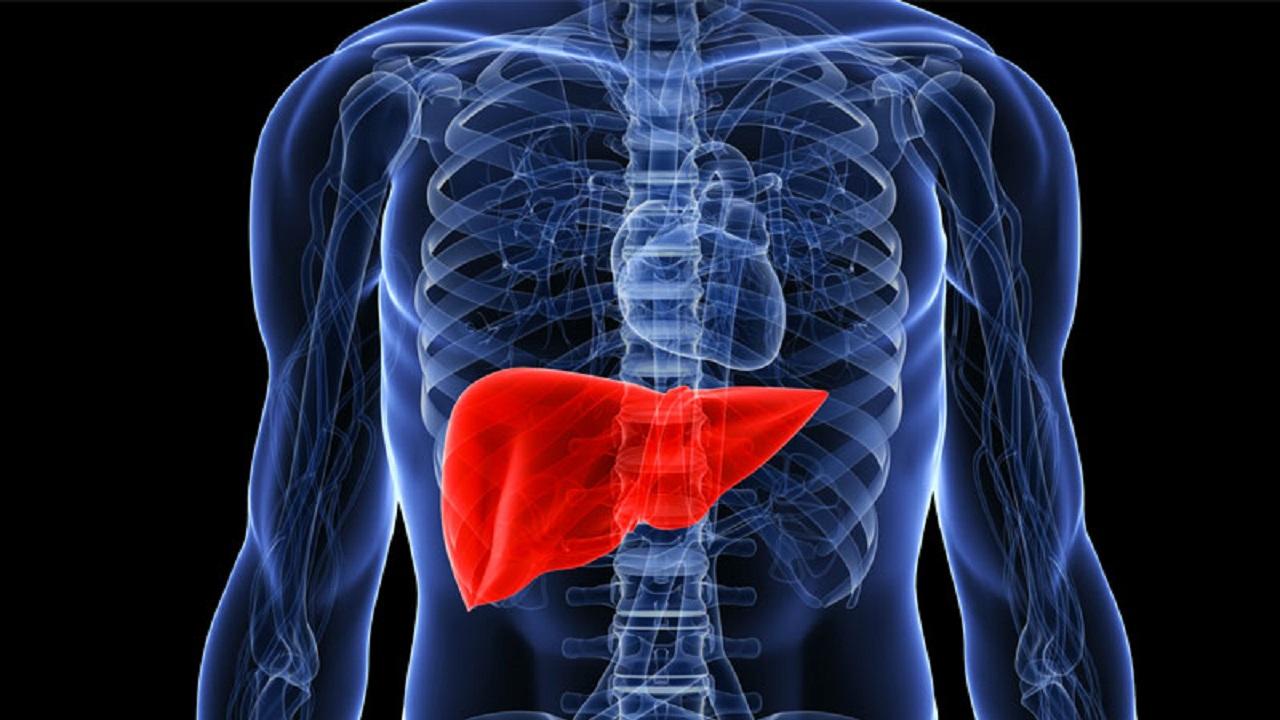 استشاري:تناول الكحول والممارسات الجنسية غير الشرعية قد تؤدي إلى أمراض الكبد