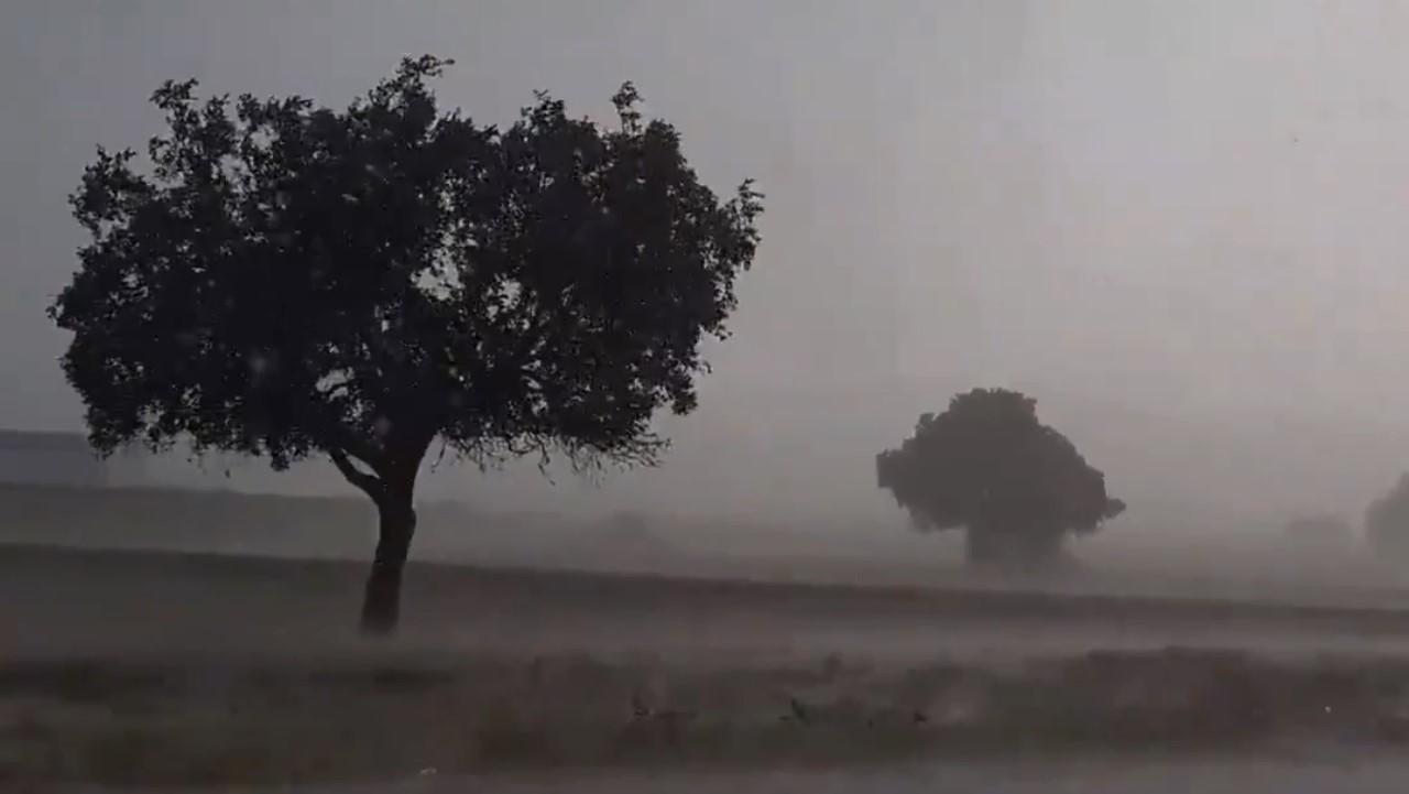 شاهد.. لحظة هطولأمطار غزيرة على جنوب العارضة بجازان