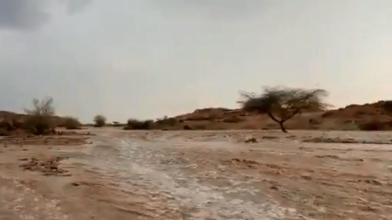 بالفيديو.. سيول قوية تداهم غرب المدينة المنورة