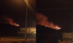 """بالفيديو.. اندلاع حريق هائل في غابات """"جبل غلامة"""""""