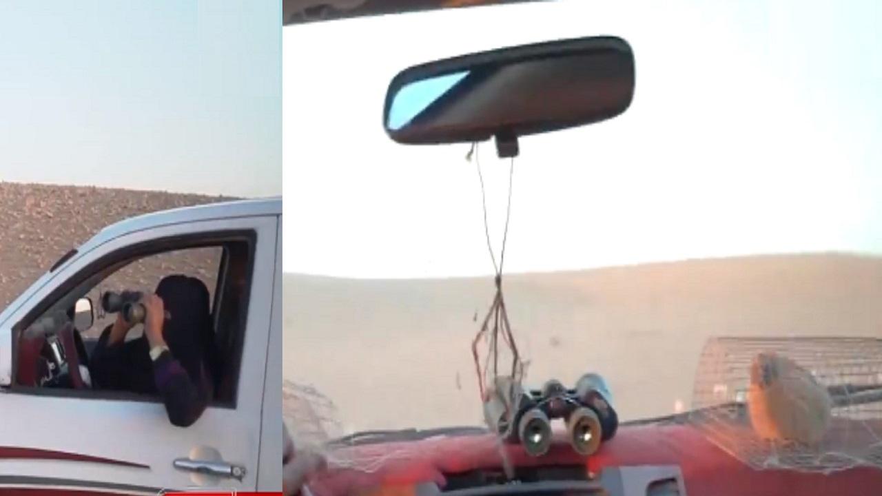بالفيديو..مواطنة تتجول بسيارتها في الصحراء لقنص الصقور النادرة