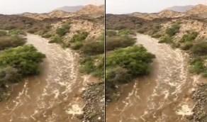 بالفيديو.. جريان السيول غرب محايل عسير