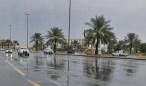 أمطار رعدية على 5 مناطق بالمملكة غدًا