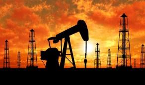 سعر النفط ينخفض 0.05 %