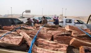 بالصور.. ضبط 16 طناً من الحطب المحلي المعد للبيع في  الرياض