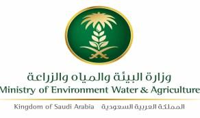 البيئة تتعاقد مع شركات أمنية لحماية ومراقبة الغابات والمتنزهات