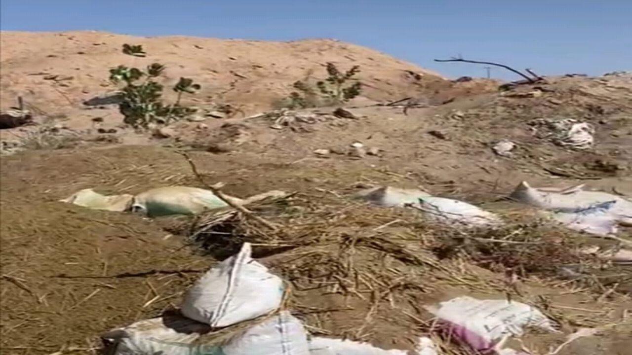 بالصور.. شاحنة تقوم برمي المخلفات على ضفاف وادي نجران