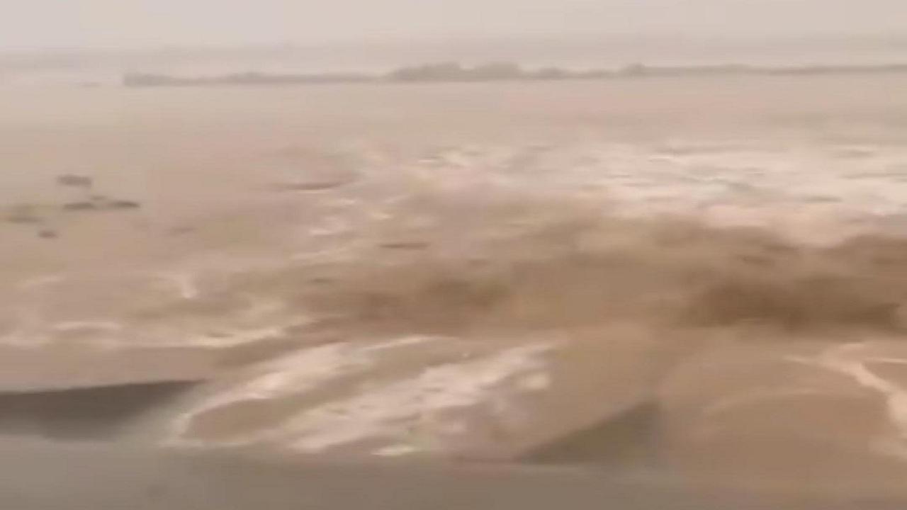 بالفيديو.. أمطار غزيرة تصل إلى حد السيول في القنفذة
