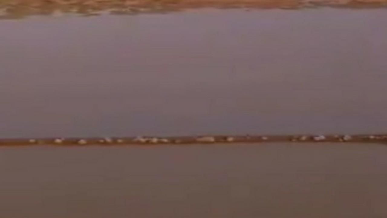 شاهد.. السيول تملأ فيضة الهوبجة بشمال أشيقر