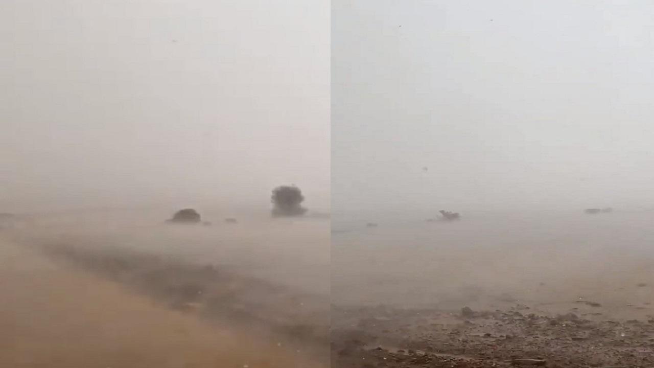 هطول أمطار غزيرة وسيول على النحيتية جنوب حائل (فيديو)