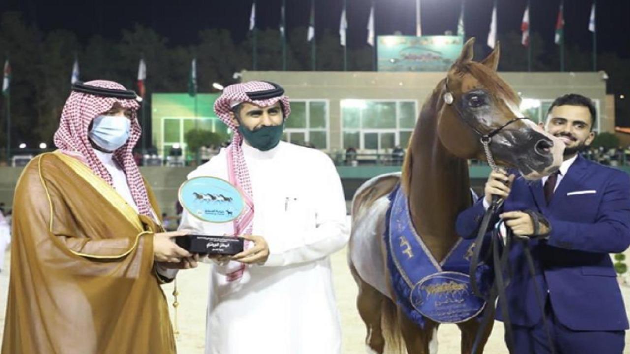 """تتويج الفائزين في بطولة جمال الجواد العربي 2020 الفئة """"ب"""""""