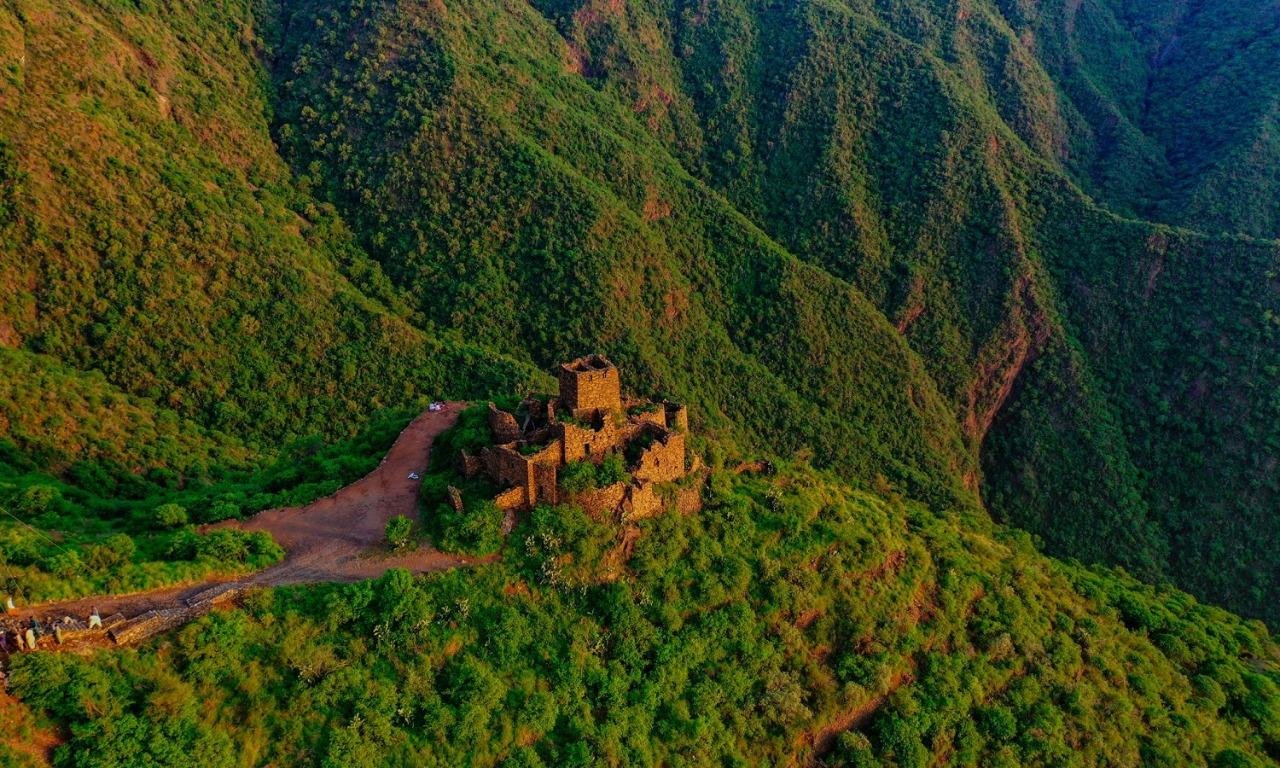 صورة جميلة للخضرة وهي تكسو الجبال في رجال ألمع
