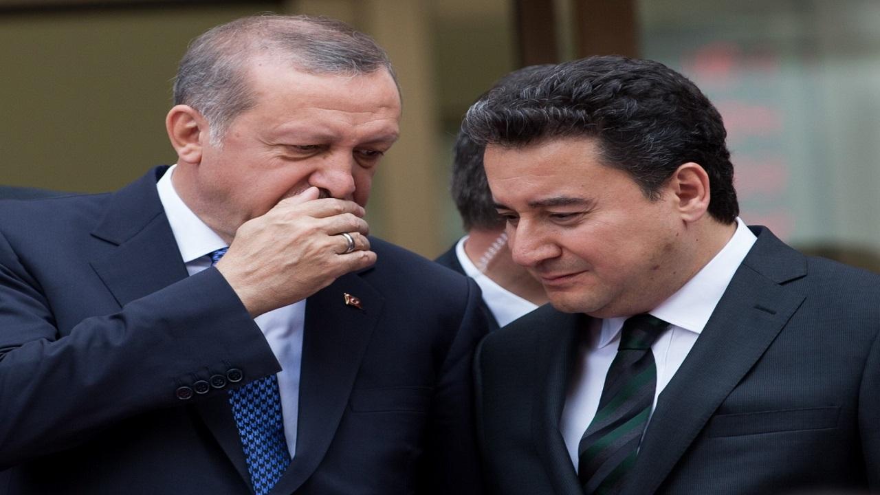 وزير اقتصاد تركيا الأسبق: أردوغان جلب لنا العار