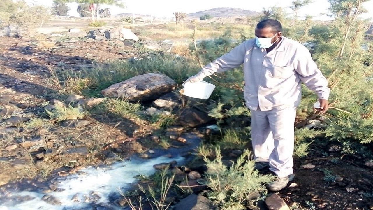 بالصور.. إنطلاق حملة لمعالجة المستنقعات ومكافحة الحشرات بمشاركة 14 فرقة بالطائف