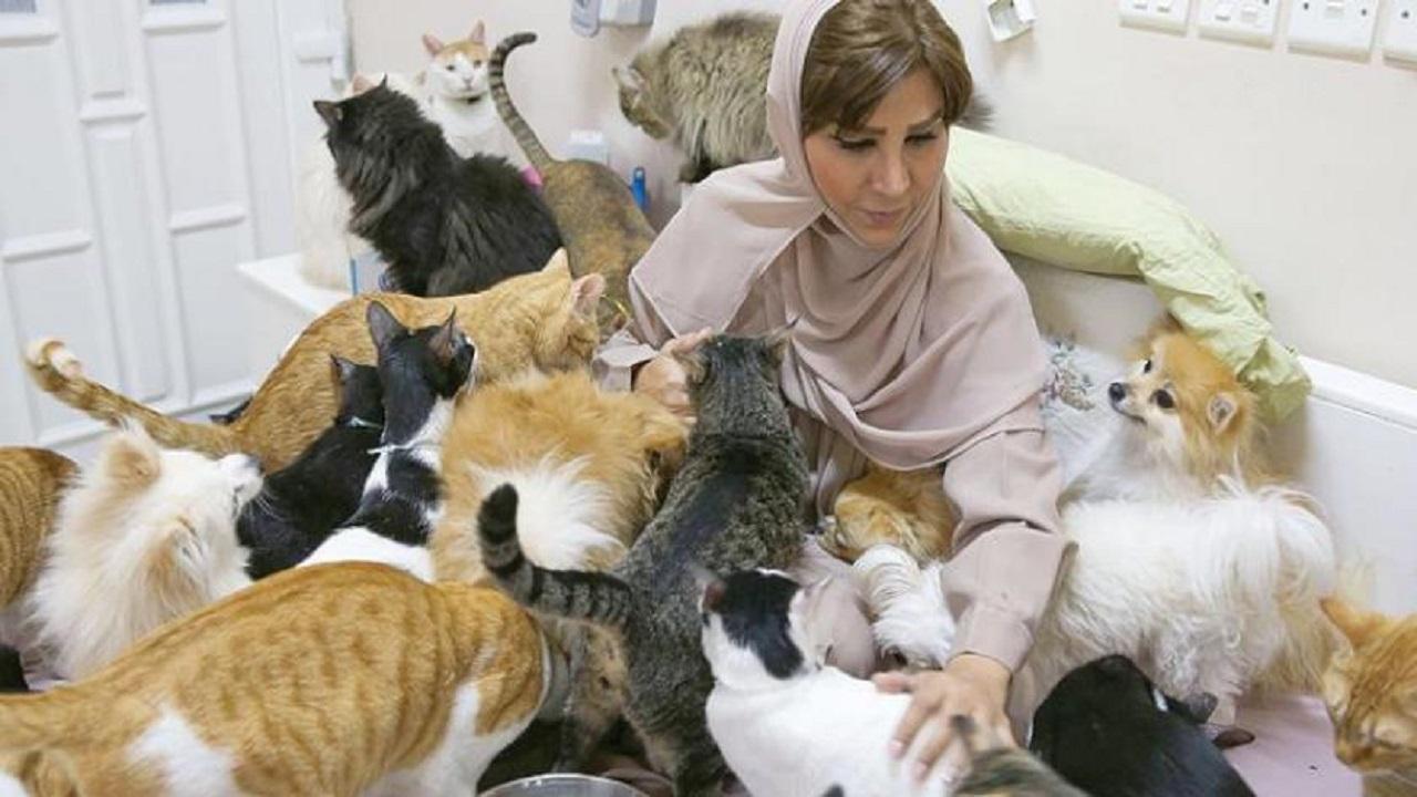 """سيدة تعيش مع 500 قط وكلب: """" أوفى من البشر """""""