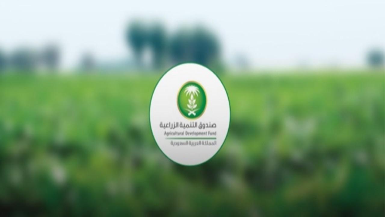 صندوق التنمية الزراعية يموّل مشاريع متنوعة في قطاع الدواجن