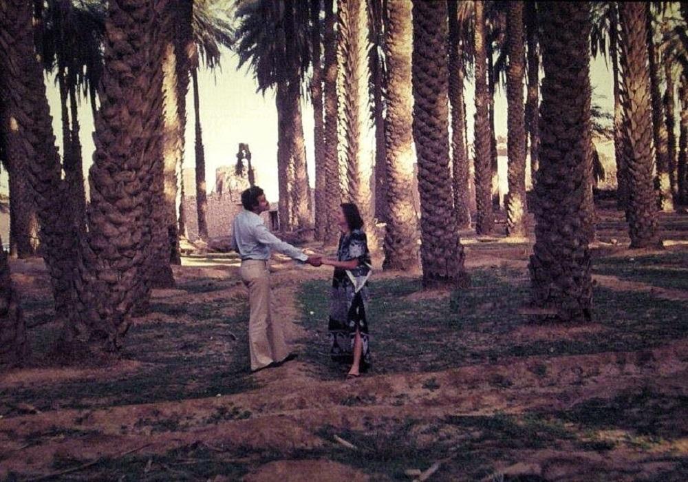 نخيل الدرعية التاريخية في مدينة الرياض 1978 م