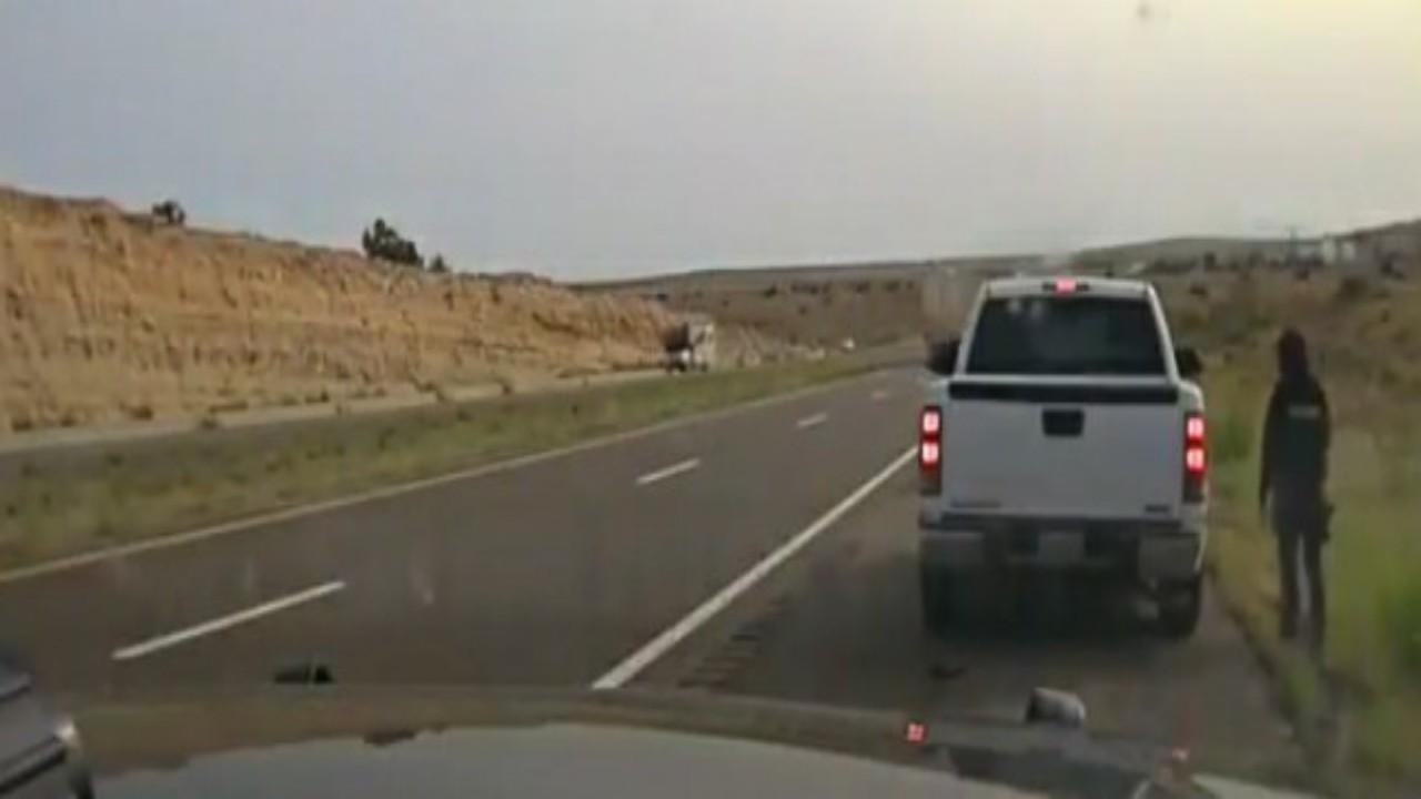 شاهد.. قائد مركبة يطلق النار على شرطية لسبب غريب