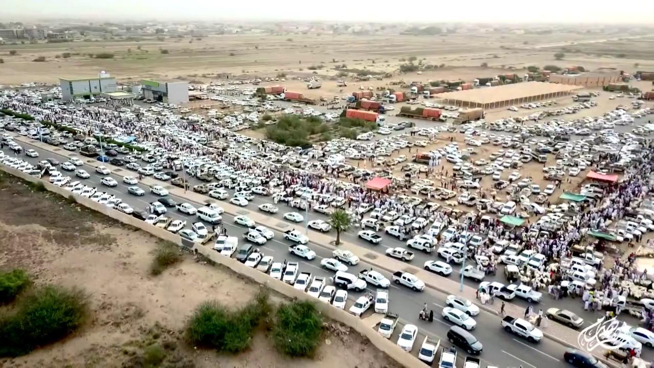 إغلاق سوق المواشي بأحد المسارحة