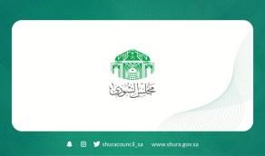 «الشورى» يوافق على حذف المادة السادسة من مشروع نظام مكافحة الاحتيال
