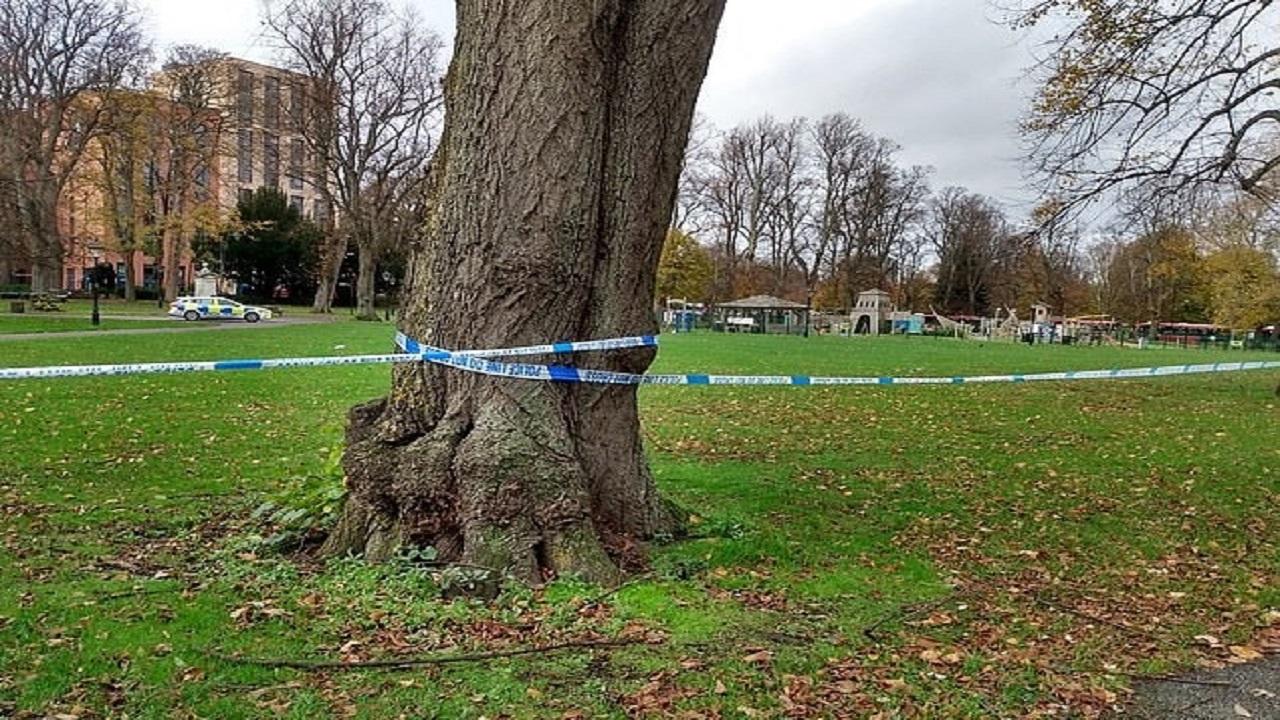 رجل أربعيني يغتصب مراهقة في وضح النهار بحديقة عامة