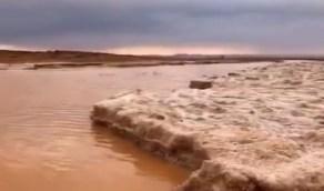 بالفيديو.. هطول أمطار غزيرة وكتل من البرد في طريف