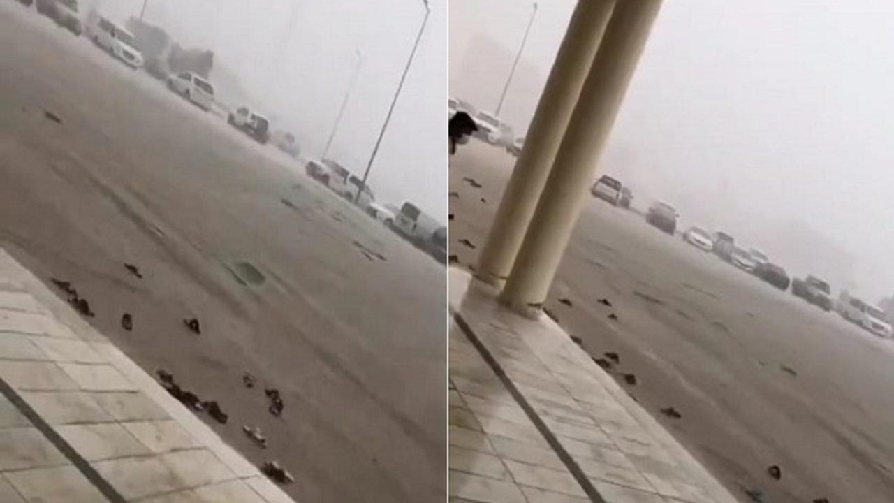 بالفيديو.. إنجراف النعال أثناء صلاة الجمعة بسبب الأمطار في حفر الباطن