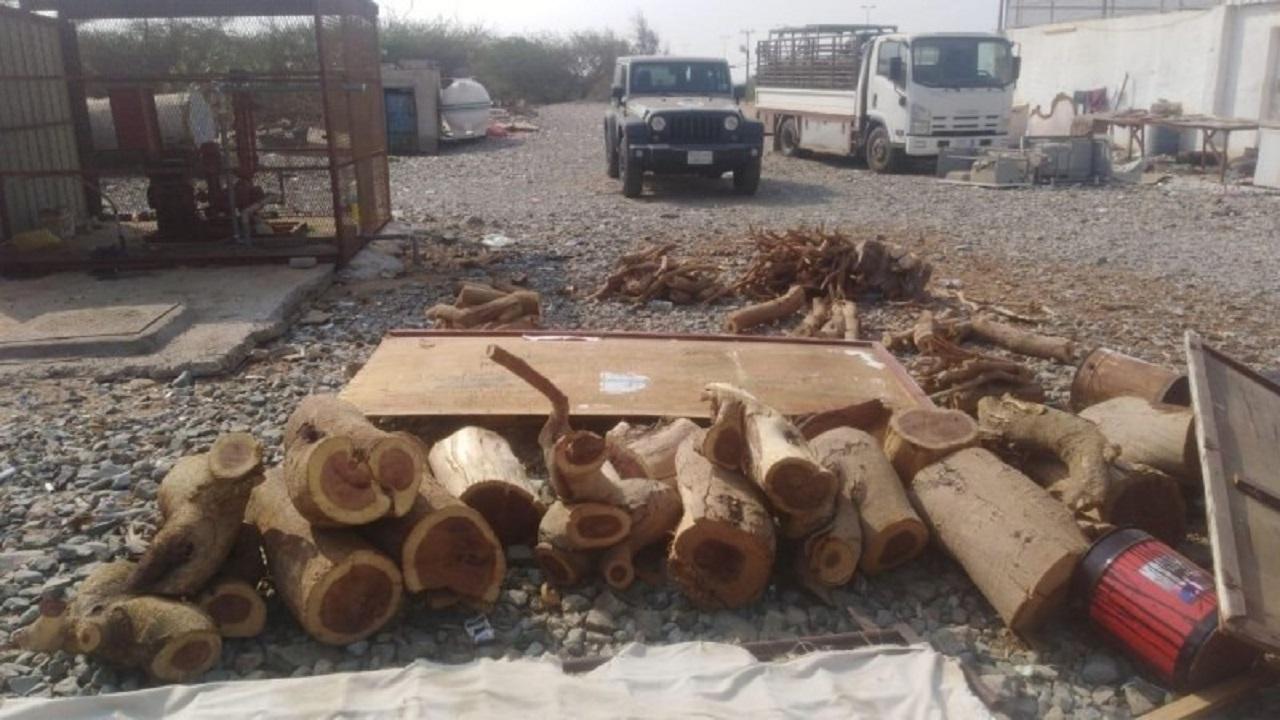بالصور.. مصادرة 150 طن حطب محلي من 5 مناطق في اسبوع